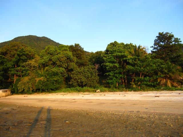 15 pana la plaja tacuta unde acultam tacuta linistea